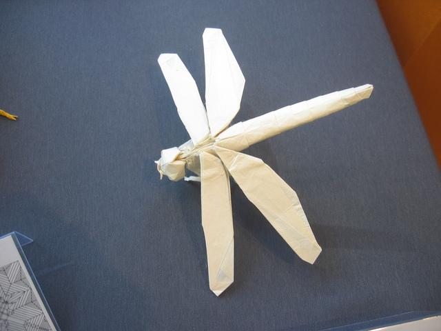 Dragonfly Satoshi Kamiya