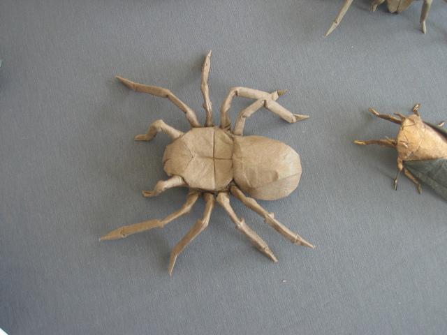 mt diablo tarantula robert lang happy folding : robert lang tarantula diagram - findchart.co
