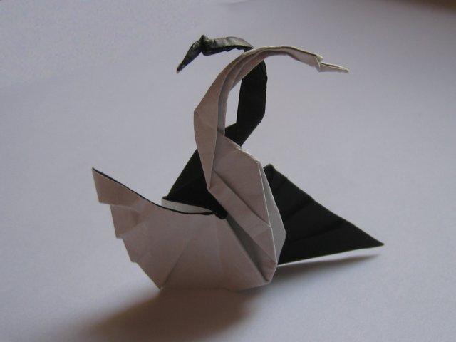 Easy Origami Napkin Swan Tutorial - Paper Kawaii   480x640
