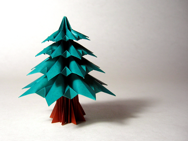 Fir Tree (Francesco Guarnieri)