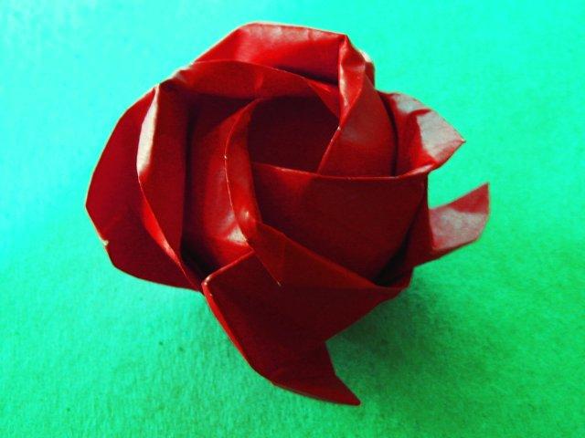 Rose (Toshikazu Kawasaki)