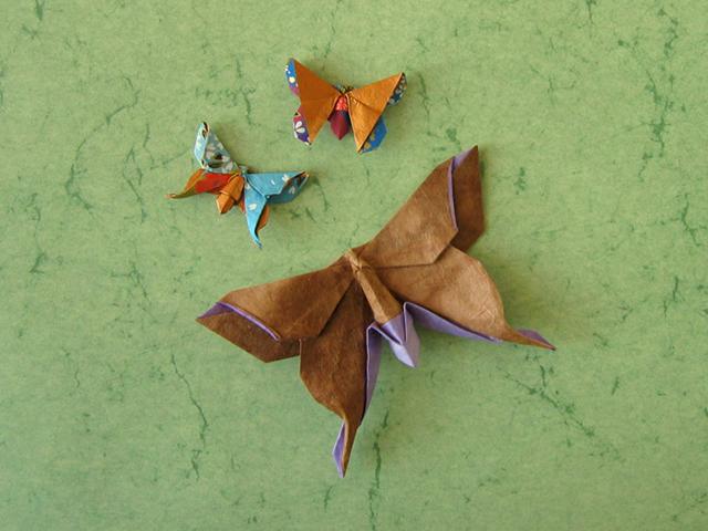 Paper Metamorphosis, Beautiful Looking Origami Butterflies | 480x640