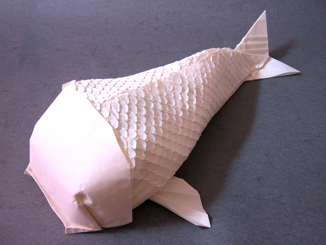 Scaled Koi (Robert J. Lang): Front View
