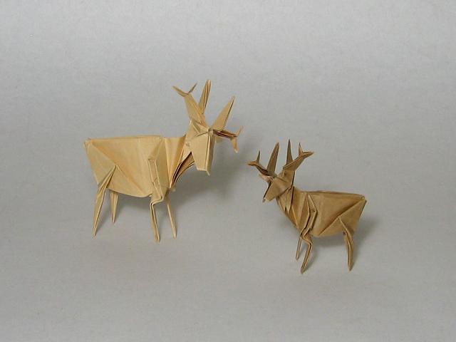 Deer (Jun Maekawa)
