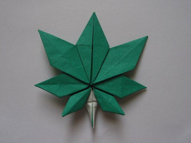 maple leaf (kyo seok oh)