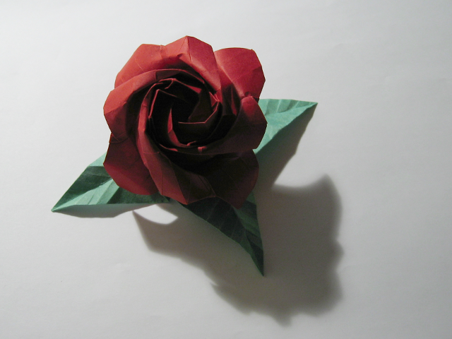 Rose (Phu Tran)