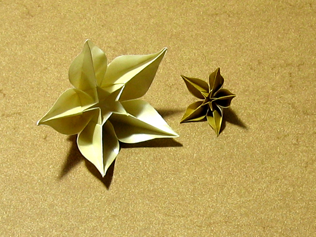 Carambola carmen sprung happy folding add new comment mightylinksfo