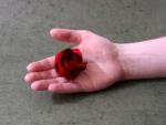 Rose of Roses (Jordi Adell)