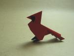Cardinal (Román Díaz)