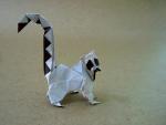 Ring Tailed Lemur (Román Díaz)